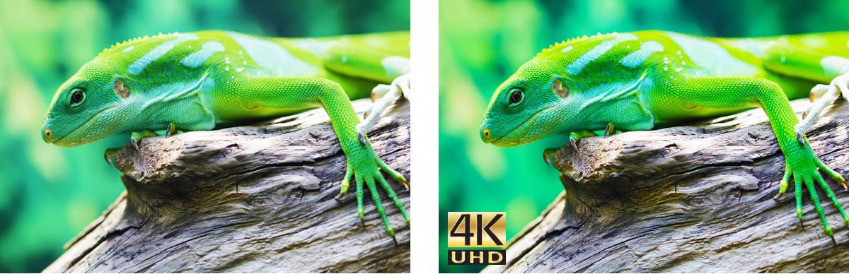 Optoma UHD60 4k projector - KlankBart, voor perfect beeld in
